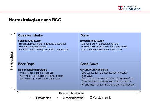 BCG Normstrategien